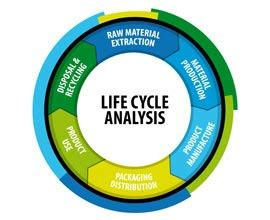 Carbon cycle research paper